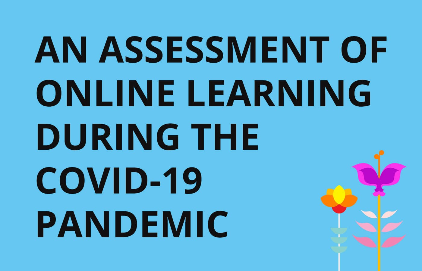 Online Learning During the Covid-19 Pandemic