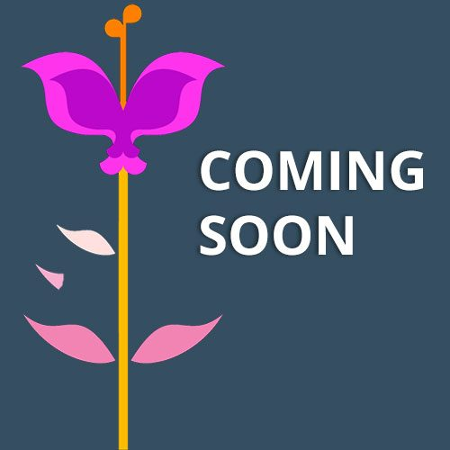 Coming-Soon-P